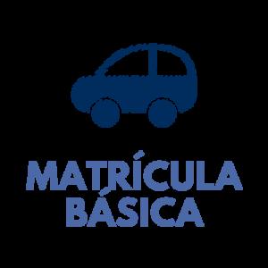 Carnet de coche (matrícula básica)