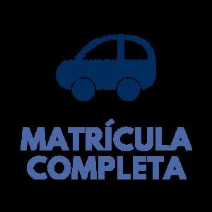 Carnet de coche (matrícula completa)
