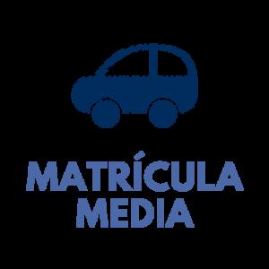 Carnet de coche (matrícula media)